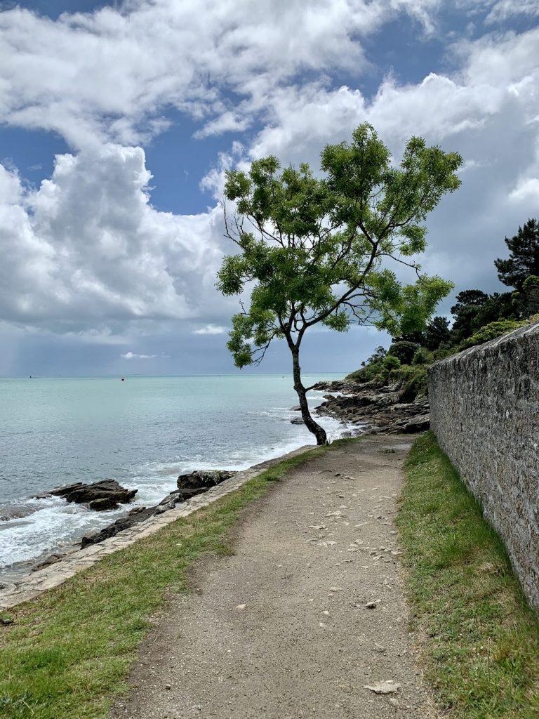 Étape 27 - Mousterlin / L'île Tudy 35 - La Marche des Femmes Invisibles